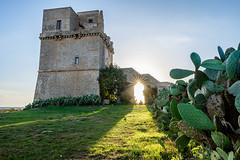 Torre Colimena (Jack/100iso) Tags: torre colimena salento tower sunset light italy fujifilm xt1 16mm f14 architettura star puglia lecce architecture arch sun