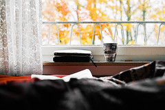 a photo ideas and coffee kind of morning (the girl who made it on her own) Tags: ronakeller aphotoideasandcoffeekindofmorning stuttgart autumn fall autumncolours yellowleaves orangeleaves colourfulleavesinfrontofmywindow bed comfortablebed filmmemories film filmdiary november canonae1 journal coffee cosyspace