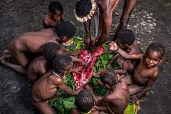 Piglet Cutting (tehhanlin) Tags: indonesia papua westpapua irianjaya wamena jayapura nusantara sony a7r2 a7rm2 humaninterest tribe thedanis sukudani portrait pigfeast earthoven ngc