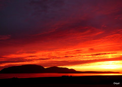A Remarkable September Sunset (orquil) Tags: remarkable dramatic september sunset intense gold colours skyscape cloudscape high hoy hills silhouette dark shadow lowlying graemsay island lighthouse seaside scapaflow sea reflected sky petertown foreground westmainland buxa buildings evening orkney islands scotland unitedkingdom uk greatbritain scenic nice view memorable attractivei