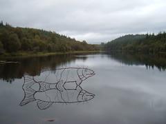 fish (ztephen) Tags: scotland aberfolyle spling lochan sculpture