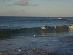 Kauia Day 5-7 (djfrantic) Tags: hawaii snorkeling kauai spoutinghorn poipu aloha hanalei summervacation kilauea kee mahalo kapaa familyvacation princeville lihue kalaheo hanapepe gardenisle nukumoi