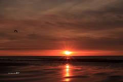 ~-~ (Simon YEH ) Tags: blue sunset red summer cloud sun seascape art beach water canon landscape interestingness  taipei    1635mm    550d earthasia mygearandme ringexcellence blinkagain flickrstruereflection1