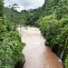 Il rio Mocoa (2)