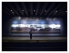 METRO / Paisaje Subterrneo 70 (ORANGUTANO / Aldo Fontana) Tags: santiago people cars subway flickr gente metro carros subte escaleras santiagodechile subterrneo reginmetropolitana orangutano aldofontana