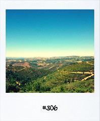 """#Dailypolaroid of 30-7-12 #306 • <a style=""""font-size:0.8em;"""" href=""""http://www.flickr.com/photos/47939785@N05/7683087024/"""" target=""""_blank"""">View on Flickr</a>"""