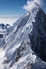 Denali NP 4-ridge (doveoggi) Tags: snow mountains alaska fromtheair denalinationalpark 7074 the4elements bestcapturesaoi photocontesttnc12 dailynaturetnc12