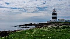 hook lighthouse (laughlinc) Tags: ocean flowers ireland lighthouse grass coast rocks widescreen coastal hooklighthouse nikond80 28300mmf3556 thechallengefactory laughlinc
