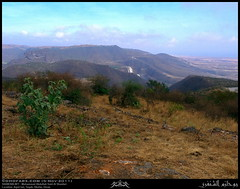 Aqair'out, Taqah, Dhofar (Shanfari.net) Tags: nature season lumix raw natural panasonic oman fz zufar rw2 salalah sultanate dhofar  khareef    dufar      dhufar governorate dofar fz38 fz35 dmcfz35