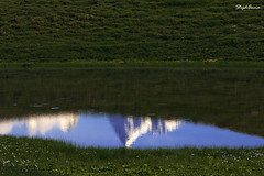 Reflexions (StephAnna :-)) Tags: lake alps grindelwald bachalpsee stephanna
