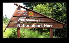 @arievantilborg_Harz-4396 (Arie van Tilborg) Tags: schloss harz burg wernigerode stausee teufelsmauer hexen vakwerkhuizen hexentanzplatz nationalparkharz arievantilborg saksenanhalt fachwerkhausern schlosshotelblankenburg