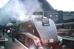 R0568.  MALLARD at King's Cross. 4th June,1961. (Ron Fisher) Tags: mallard kingscross a4 60022 easternregion