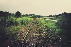 (ikhals) Tags: railroad trees italy green nature grass lines way countryside vanishingpoint track italia country tracks rail railway line route rails railways railroads iphone monferrato iphone4 vsco iphoneonly snapseed vscocam fartoodope