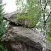Glacial Erratic Perched Blocks