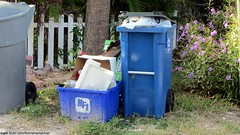 Treasure Island Recycling Program - Republic Services 35 gallon Otto cart and old BFI Rehrig recycling bin (FormerWMDriver) Tags: trash truck garbage republic bin collection gal otto rubbish waste cart refuse recycle recycling 35 services sanitation gallon bfi browningferrisindustries 1920x1080
