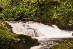 Inversnaid Falls, Loch Lomond (Ewen K) Tags: scotland lochlomond inversnaid inversnaidfalls