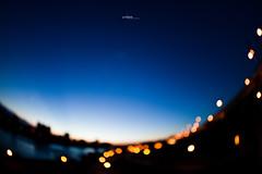 [urban] magic moment (pooldodo) Tags: city blue light urban night canon focus taiwan taipei f4 blus sinset 815mm pooldodo