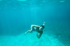 17082012-DSC_0420.jpg (WiLPrZ) Tags: espaa mer soleil mar nikon flickr underwater mallorca espagne baleares milla ewa baar mditerrane ins wow1 d90 misamores balares mesamours mesanges ewamarine mallorque sableblanc plongesousmarine nikond90 flickraward yourbestphotography misangeles eaulimpide eaucristalline d90nikon flickrunitedaward flickrtravelaward agosto2012 aout2012 merbleueturquoise