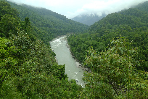 Sikkim, Himalayas: Sea of greenery and a fresh water river