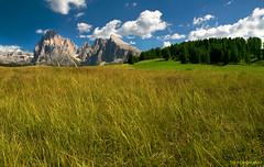 Alpe di Siusi (Giorgio Tozzi photo) Tags: italia unesco altopiano montagna trentino dolomiti valgardena ortisei panorami sassopiatto alpedisiusi sassolungo sassocorto