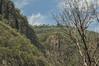 DSC03248 (Braulio Gómez) Tags: barranca barrancadehuentitán biodiversidad caminoamascuala canyon canyonhuentitan faunayflora floresyplantas guadalajara guardianesdelabarranca huentitán ixtlahuacandelrío jalisco mountainrange méxico naturaleza paisaje senderismo sierra