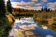Midday, Algonquin Park (klauslang99) Tags: nature naturalworld northamerica canada klauslang algonquin park oxtonge river clouds water reflection trees landscapes ontario