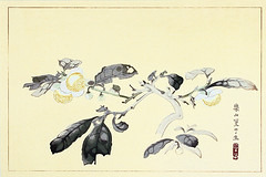 China tea (Japanese Flower and Bird Art) Tags: flower china tea thea sinensis theaceae rakusan tsuchiya nihonga woodblock print japan japanese art readercollection