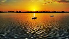 Lake Sumter Landing  The Villages, Florida (patrickr.allen) Tags: lake sun sunlight sunset boat sky water golfcourse florida thevillages yellow orange bird wildlife landscape