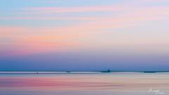 sunset in pastel over the Westerschelde (Wilma van Oorschot) Tags: wilma angelphotography olympusem5 olympusomde5 mzuikodigitaled1250mm13563 12mm westerschelde zeeland hansweert pastel sunset outdoor pink orange ships