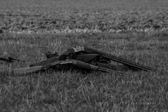 Guns down (jasonpeachey901) Tags: shotgun shotguns shooting shoot skeet clay claypigeonshooting art artistic sportphotography