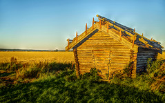 Locked barn (STTH64) Tags: barn field autumn locked lock sderfjrden finland