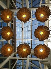 De glazendakconstructie en lampen (zaqina) Tags: open monumentendag 2016 pakhuis libau groningen