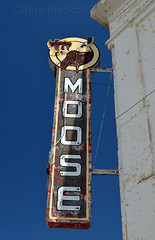 Moose (Patinagal) Tags: sign signage graphics typography relic