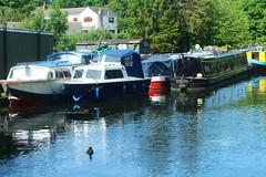 Leeds Liverpool Canal Rodley Leeds 01 (jdathebowler Thanks for 835,000+ views.) Tags: vividstriking autofocus leedsliverpoolcanalrodley rodleyleeds canal barges