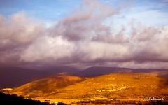 Golden hill (Fabienne G) Tags: banon provence hill colline gold sunlight sunset sunshine landscape paysage