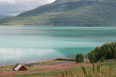 paysage (mimu_13) Tags: norvge norway norge nx500 samsungnx troms maisonrouge redhouse maison house hus route91