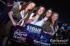 David Guetta - Stone and Music Festival
