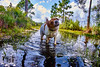 Doggo in water (FunkadelicSam) Tags: doggo dogs animals florida water flood swamp woods country beagle fun hilarious cute puppy america trees autum fall halloween is comming