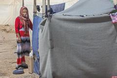 Hardship in the Desert_314 (EU Humanitarian Aid and Civil Protection) Tags: iraq fallujah anbar water nrc norwegianrefugeecouncil children desert