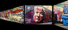 Trump's Wall (krapzapper) Tags: trump wall art alley melbourne krapzapper pentax k3 bricks message paint painting talkischeap