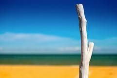 bianco (enemene67) Tags: litorale sulmare spiaggia bianco vernice legno