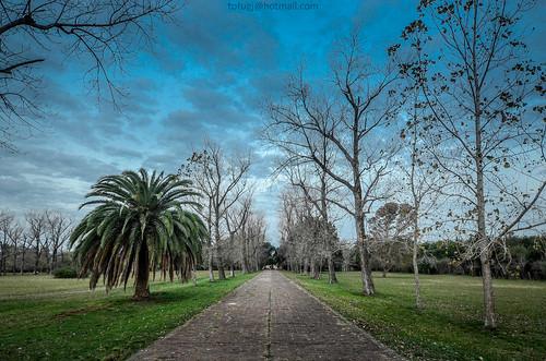Invierno en el Palacio San José