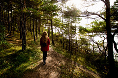 Spaziergang im Wald (eagleseyes) Tags: estland eesti estonia europa reisebilder travel reise high contrast wald spaziergang walking forest