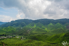 DSC_0074 (Dinesh Parate) Tags: scenic beauty landscape teaplantation hill station sky blue greenery mountains nature