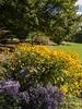 Clyne Gardens 2016 09 30 #26 (Gareth Lovering Photography 3,000,594 views.) Tags: clyne gardens botanical swansea wales flowers trees shrubs park olympus stylus1s garethloveringphotography