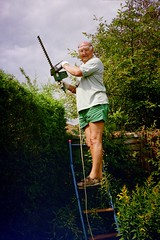 Hedge Clipping (pj's memories) Tags: garden sandals lincolnshire hedge shorts ladder hedgetrimmer nettleham
