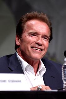 From flickr.com/photos/22007612@N05/7588442392/: Arnold Schwarzenegger