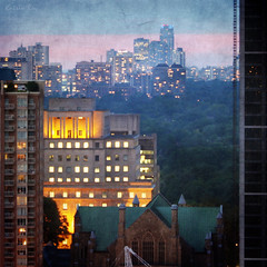 Toronto's Mixed Forest. L'heure Bleue Magnifique (Katrin Ray) Tags: pink blue light sunset summer sky toronto ontario canada green architecture golden stpauls july textures bluehour anglicanchurch bloorstreet texturebyme dreamscapesoftoronto katrinray texturesquared textureb