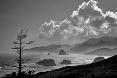 Oregon Scape (Jeslophoto) Tags: park travel sea vacation bw white black rock oregon jesse landscape coast high rocks day state outdoor formation noon 1855mm 1855 lopez nikkor ecola jesselopez nikond3100 jeslophoto