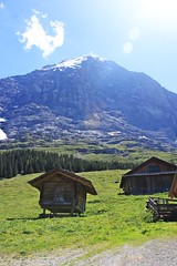 From Alpigen (Roleck) Tags: mountains alps switzerland northface eiger oberlandbernese